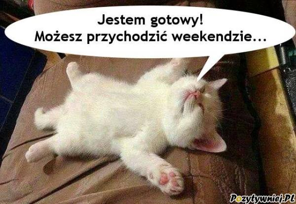 Gotowy na weekend
